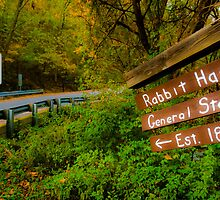 This Way to Rabbit Hash by Jeanne Sheridan