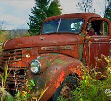 GM by Alana Ranney