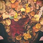 Fall Feet are Happy Feet (best viewed large) by lroof