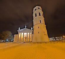 Cathedral of Vilnius by Stefan Trenker