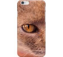Moroccan Feline iPhone Case/Skin