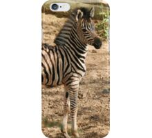 Baby Chapman Zebra iPhone Case/Skin