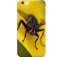 Mr Fly iPhone Case/Skin