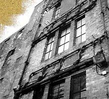 We Live In Cardboard Houses by Alysia Trackim