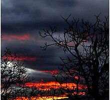 As Light Fades & the Storm Comes In. by tc5953