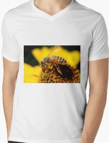 Honey Bee Mens V-Neck T-Shirt