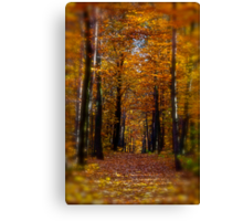 ♥ ♥ ♥ ♥ series. Autumn Leaves (Les Feuilles Mortes).Memories of those happy times when we were all together. Brown Sugar Storybook.  Favorites: 13 Views: 1742 . Thanks! Canvas Print