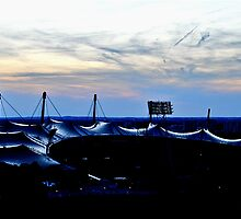 Shiny, Olympic Roof  by PhilMi