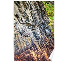 Shale Abstract Poster