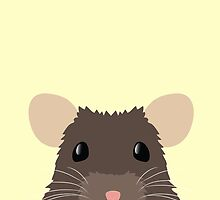 Cute peeking pet RAT by jazzydevil