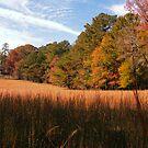 Autumn in Chickamauga by © Bob Hall