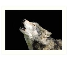 The Jubilation Of The Wolves Art Print