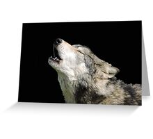 The Jubilation Of The Wolves Greeting Card