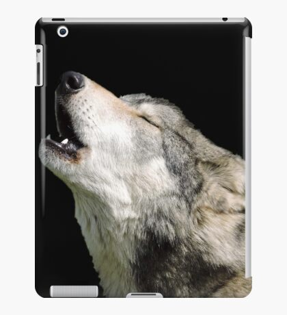 The Jubilation Of The Wolves iPad Case/Skin