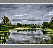 lagoon  by christine davis