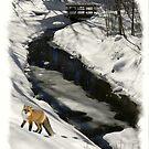 Fox In Snow by Kenneth Hoffman