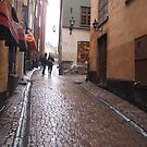 Gamla Stan in Stockholm by jayview