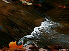 Lil' Falls by Marcia Rubin