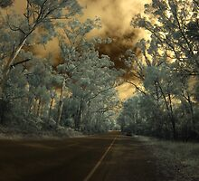 Road to Denmark, WA by BigAndRed