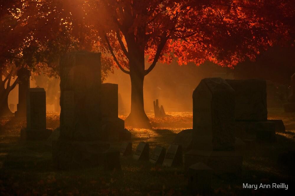 Samhain's Fire by Mary Ann Reilly