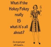 Hokey Pokey by Sherene Clow