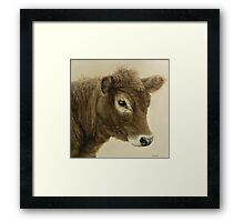 Gentle Calf Framed Print