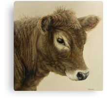 Gentle Calf Canvas Print