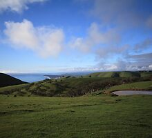 Fantastic Fleurieu by BBCsImagery