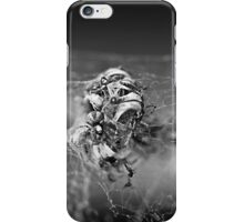 the king of Lowertown iPhone Case/Skin
