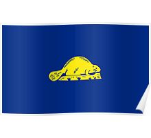 State Flags of the United States of America -  Oregon (reverse) Poster