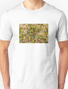 Macro of clover sprouts T-Shirt