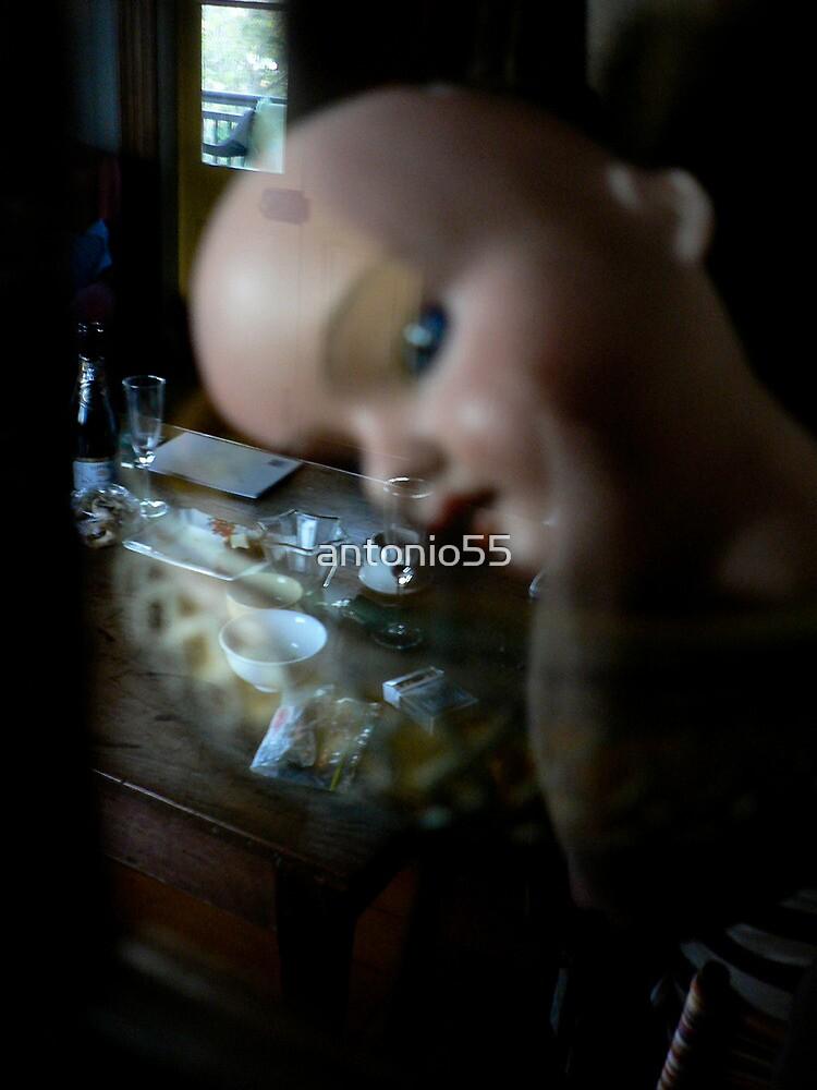 Dollhouse by antonio55