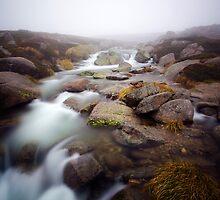 Headwater by John Robb