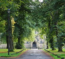 The Avenue to Wentworth Church, Near Rotherham by Rees Adams