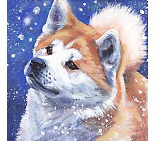 Japanese Akita Fine Art Painting Photographic Print
