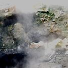 Sulphur Pool by Beverley  Johnston