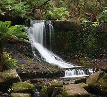 Horseshoe Falls by gabbylawson
