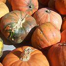 Pumpkins! by paintbrush