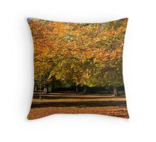 Autunm Leaves Throw Pillow