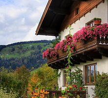 Typical Austrian architecture by Sue Leonard