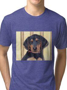 Beagle/Dachshund Puppy Tri-blend T-Shirt
