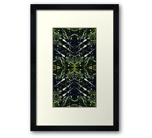 Water drops, nature, stems Framed Print
