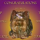 Top Ten Banner (Tenacious Terriers Group) Challenge by Gail Bridger