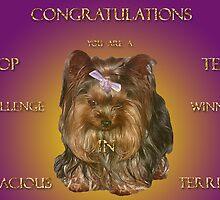 Top Ten Banner (Tenacious Terriers Group) Challenge by Gail Bridger