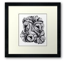 Compass - Barn Owls and Hibiscus Flowers Framed Print