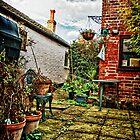 My Garden autumn 2010 by Simon Duckworth