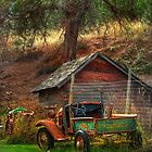 Old Fords never die, they just become picturesque by John Poon