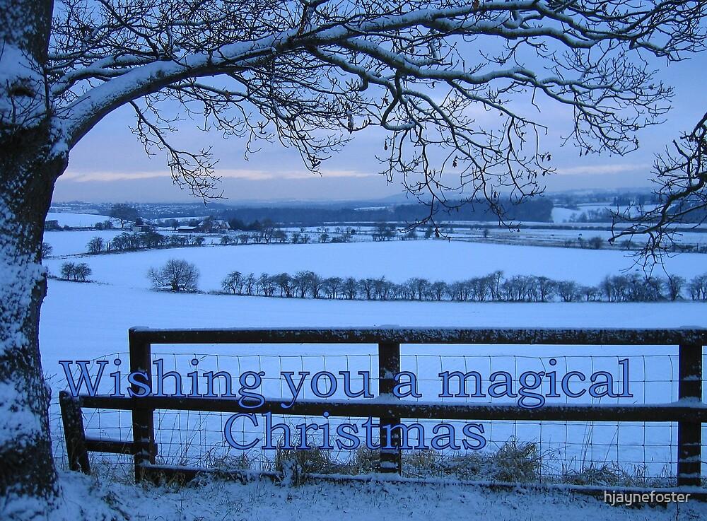 A Winter Wonderland Christmas Card by hjaynefoster