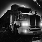 BIG OLD FARM TRUCK by pdsfotoart