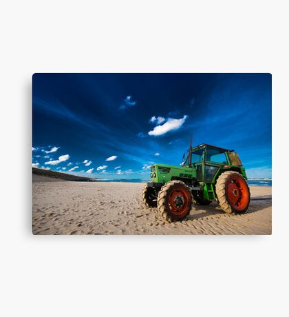 Primary Canvas Print